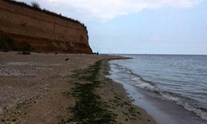 Plaja 23 August – plajă sălbatică