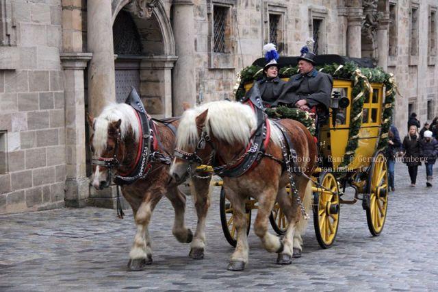 Germany_Nurnberg_horse_s