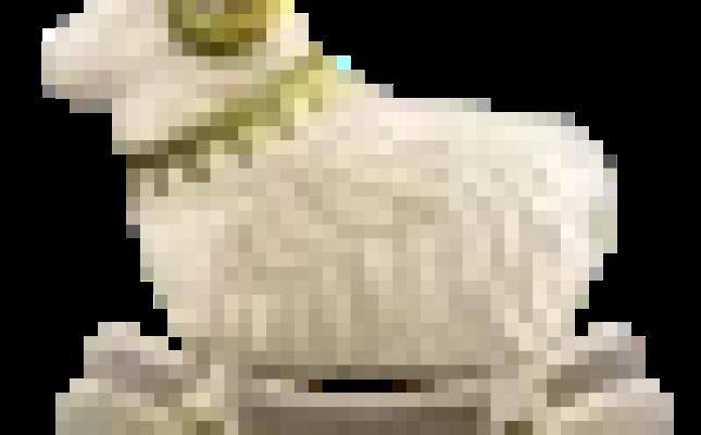 Animal Crossing New Horizons Zodiac Star Fragment How To