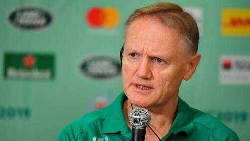 Joe Schmidt hinted at his unhappiness with the officiating in Ireland's loss to Japan