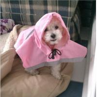 Pink Medium , XXL Dog raincoat with hood for small dogs