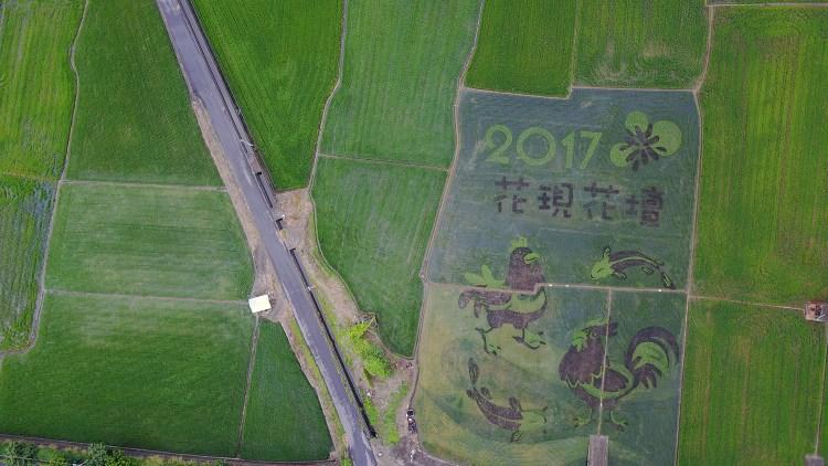 彰化》親子好去處!2017年花壇彩繪稻田 – 三春老樹彩繪牆 – 竹筍節 |空拍俯視彩繪模樣
