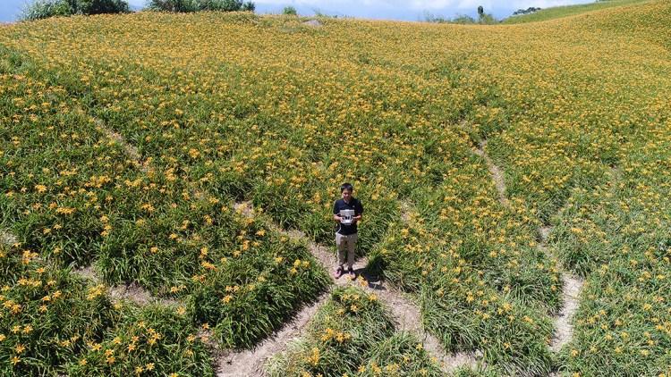 花蓮》 2018 六十石山金針花季|滿山遍野的金針花海聞名