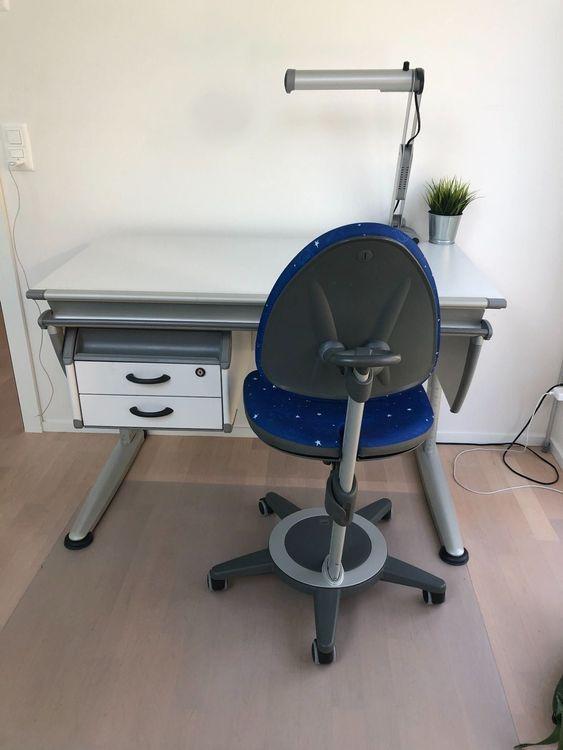 Moll Schreibtisch Gebraucht 2021