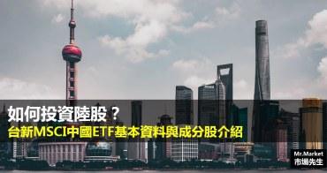 如何投資陸股?台新MSCI中國ETF基本資料與成分股介紹