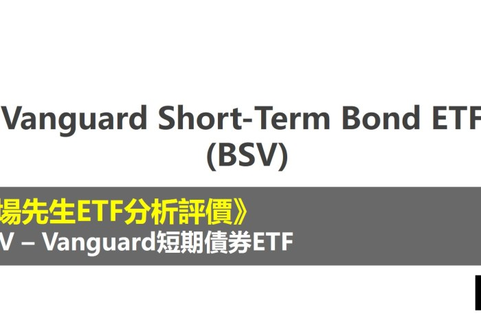 BSV ETF分析評價》Vanguard Short-Term Bond ETF (Vanguard短期債券ETF)