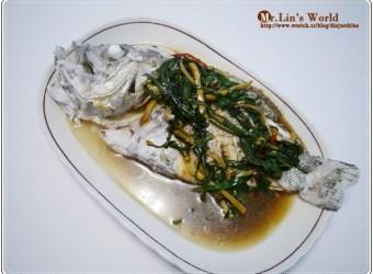 (魚) 超好吃的隱藏版魚種—大目鱸