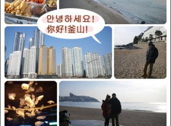 韓國釜山行海雲台、APEC Houes、釜山水族館