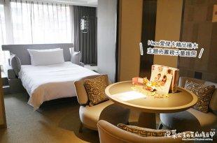 台北晶華酒店二訪 孩子們的總統套房 德國Hape愛傑卡精品積木  Family Room