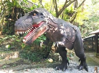 沖繩景點│名護│親子 沖繩恐龍公園 DINO恐龍公園 山原亞熱帶之森 沖繩恐龍樂園