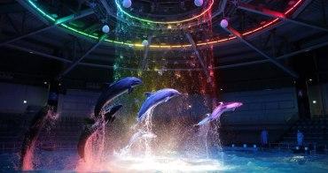 東京自由行程 /Aqua park品川水族館 東京水族館 極美夢幻的海豚秀 東京室內景點  大人小孩都適合的水族館