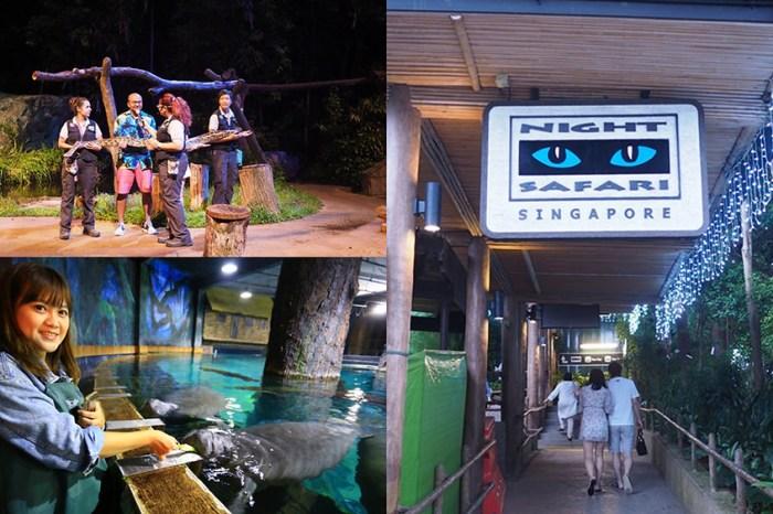 新加坡景點 夜間野生動物園、河川生態園 NERF Action Xperience