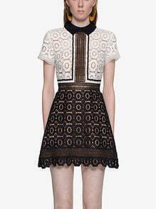 Contrast Collar Lace Embroidered A Line Dress