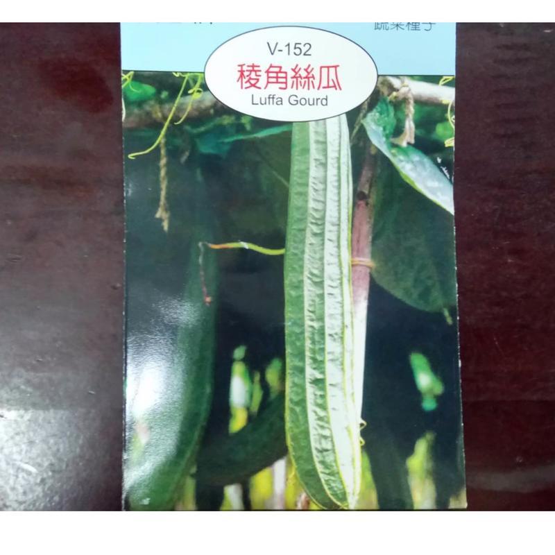 農用711 稜角絲瓜 澎湖絲瓜 蔬菜種子 種子 - 露天拍賣