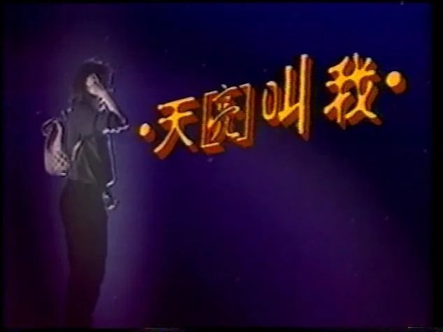 1997 華視 天亮叫我 石峰 席曼寧 王淑娟 季芹 王耀慶 - 露天拍賣