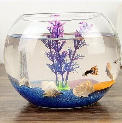 透明圓缸 圓形金魚缸 生態創意玻璃魚缸金魚缸水培缸花瓶加加雜貨 - 露天拍賣