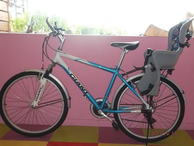 捷安特高檔腳踏車 - 露天拍賣