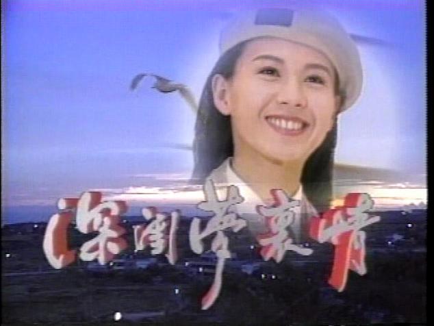 1995 中視 深閨夢裡情 涂善妮 劉錫明 季芹 李志希 許淑蘋 黃仲崑 梁修治 - 露天拍賣