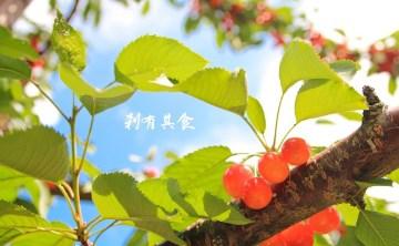 山本觀光果樹園 | 北海道余市  143年歷史,季節限定水果現採現吃到飽,還有海鮮BBQ