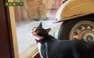 【台中美食祭】 找路咖啡