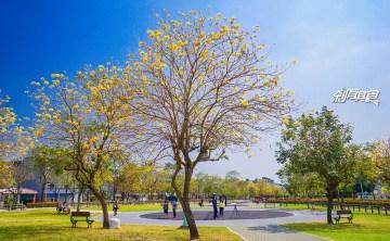 廍子公園 | 台中最美的黃金公園 黃金風鈴木盛開中! 適合帶小孩放電