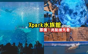 Xpark水族館 | 桃園景點 8/7開幕,購票、亮點搶先看 海豹魟魚水豚還有「Xcafe」企鵝陪你吃飯 (影片)