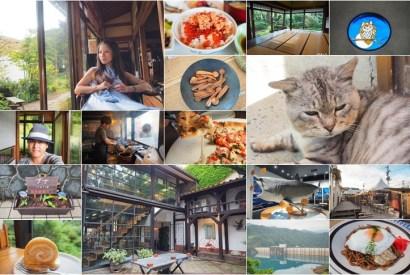 台灣虎航直飛仙台-酒雄東北文創與美食還有貓貓的自駕旅行