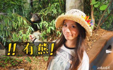 八幡平登山服務中心-遇到熊該怎麼辦?