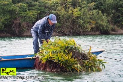 [高知]搭乘屋形船遊四萬十川,參觀傳統漁法!