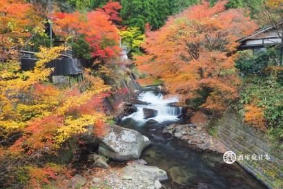 [自駕心得]2016九州湯布院高千穗熊本紅葉自駕之旅