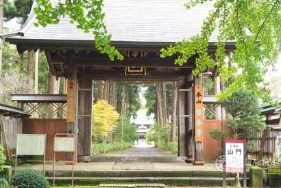 成田機場轉機與停留企劃「TRANSIT&STAY」 免費導覽帶你玩多古小鎮 單車 賞花 品美食