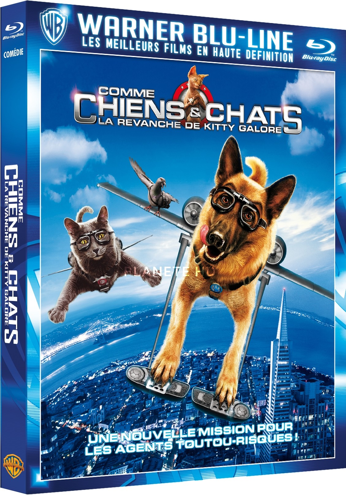 Comme Chien Et Chat 2 : comme, chien, Comme, Chiens, Chats, Revanche, Kitty, Galore, Simple, Blu-ray, (Warner, Bros., France)