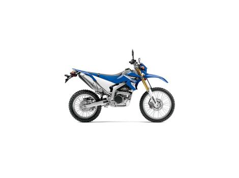Yamaha Wr250 motorcycles for sale in Eustis, Florida