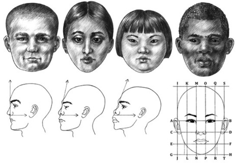 'face reference' in Drawing References and Resources