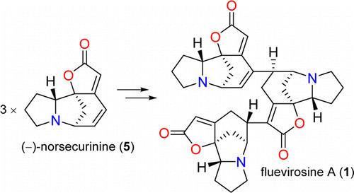 Fluevirosines A–C: A Biogenesis Inspired