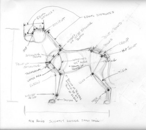 'draw a dog' in Drawing References and Resources