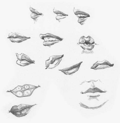 'mouth drawing' in Drawing References and Resources
