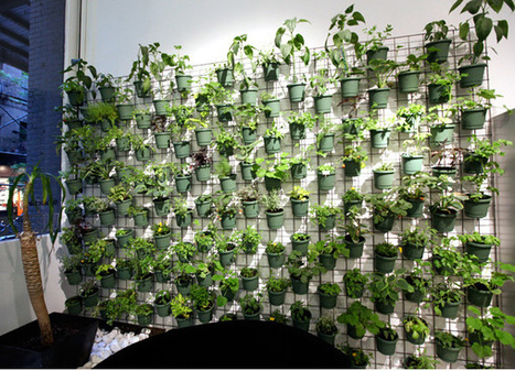 GARDEN Vertical Garden 5 Cheap And Easy Garde