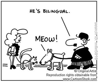 EAL Teachers: Dissecting the bilingual brain- Insights of