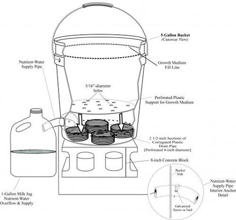 Hugelkultur: Composting Whole Trees With Ease P...