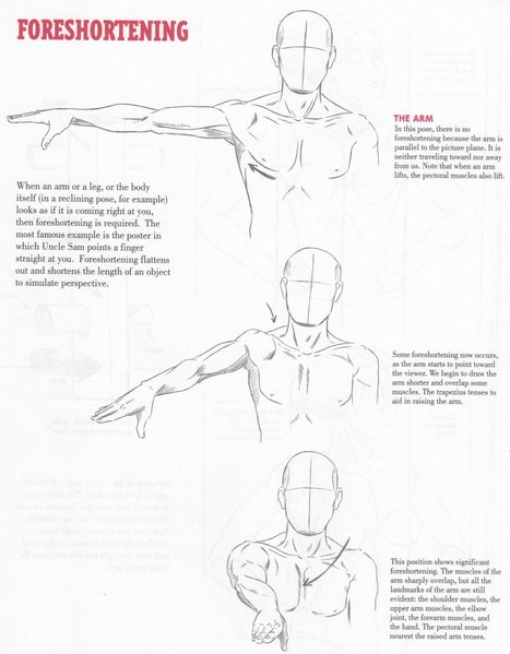 'reference guide' in Drawing References and Resources, Page 8