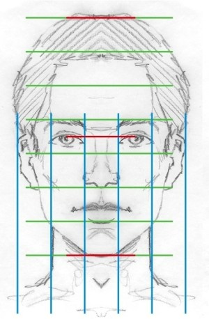Facial Proportions Reference Guide   Drawing Re