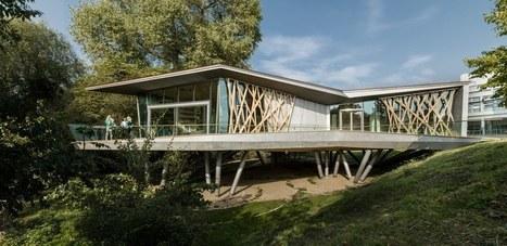 Maison Moderne Container | Sichtschutz