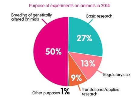 use animal research diagram new finished basement wiring facts and figures on testing cruelty f free international