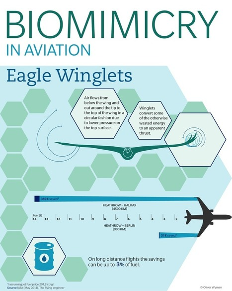 eagle wing diagram 84 yamaha virago wiring s wings inspire more fuel efficient plane planes