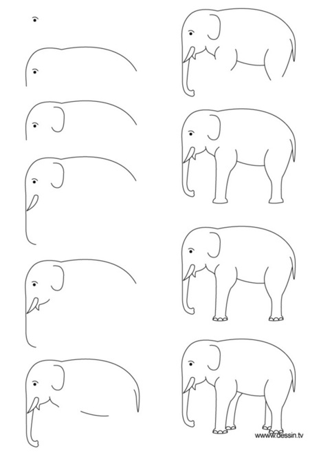'how to draw an elephant' in Drawing References and Resources