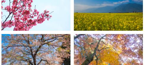 【風景攝影明信片套組】台灣日本之美療癒系風景攝影明信片套組 線上購買
