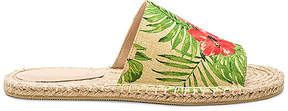 RAYE Oahu Slide