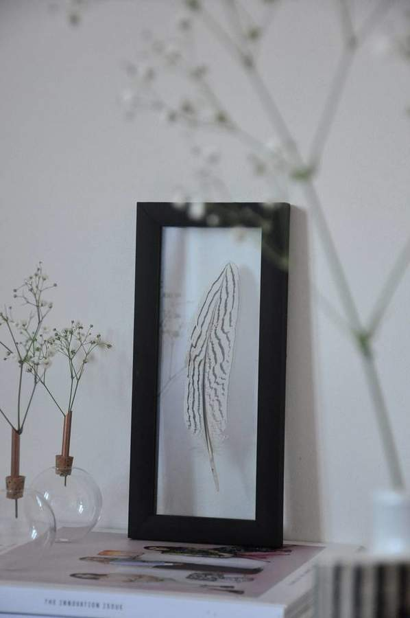 Norrö Design Framed Silver Pheasant Feather