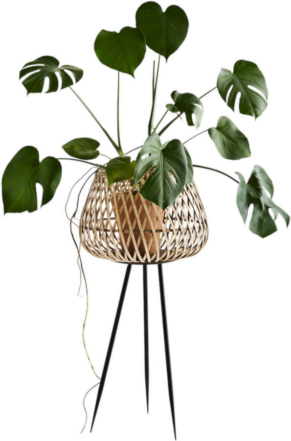 The Little House Shop Bamboo Flower Pot Stand